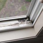 Cách lau chùi cửa sổ hiệu quả và nhanh nhất